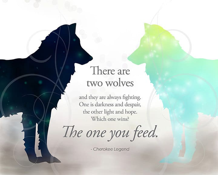 Talk: Which Wolf are you Feeding?